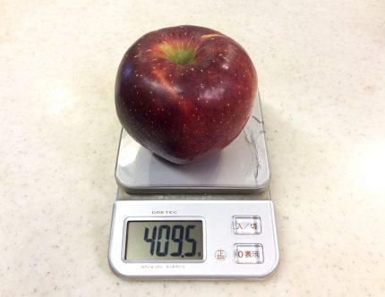 リンゴホール5549